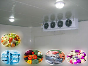Cold Storage with Refrigeration Units for Fruits Vegetables Sea Food Blood Medicine