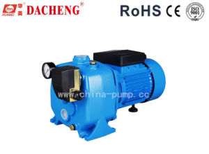 Jet Series Pump (DCP150) pictures & photos