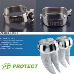 Protect Orthodontic Tooth Molar Bands pictures & photos