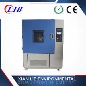 Lib Electronic Power Laboratory Temperature Relative Humidity Aging Tester pictures & photos