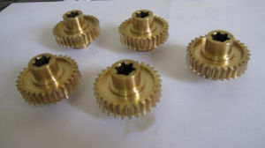 High Quality Brass Worm Gear Provided pictures & photos