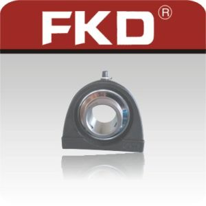 FKD Pillow Block Bearing pictures & photos