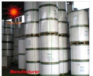 Manila Paper pictures & photos