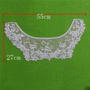 Cloth Decorative Embroidery Lace Collar (cn134) pictures & photos