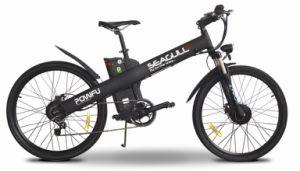 Electric Bike with Nuvinci CVT 360