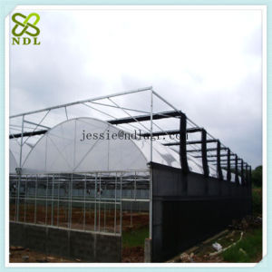 Double Inflated Plastic Film Green House pictures & photos