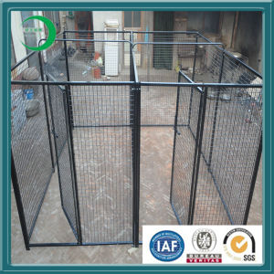 Cheap Chain Link Dog Kennels -Custom Designs for Dog House pictures & photos