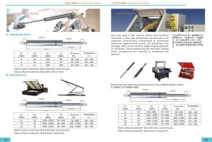 Stainless Steel Gas Spring /Gas Lift pictures & photos