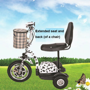 Hot Sale 3 Wheel Electric Mobility Scooter for Adult pictures & photos