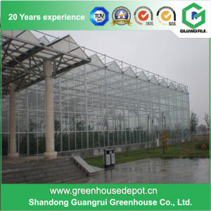Glass Greenhouse with Galvanized Steel Structure for Flower and Vegetables Growing pictures & photos