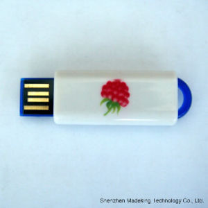 Plastic USB Flash Drive USB Stick with Logo Printed pictures & photos