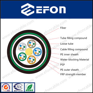 Single Mode FRP Central Strength Member Water-Blocking 12 24 36 96 144 288 Core Fiber Optical Cable (GYFTY53) pictures & photos