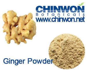 Instant Tea Ingredients Ginger Powder