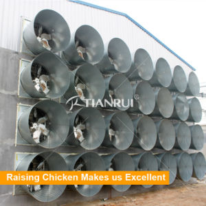 China Manufacture Tianrui Automatic Chicken Poultry Air Ventilation System pictures & photos