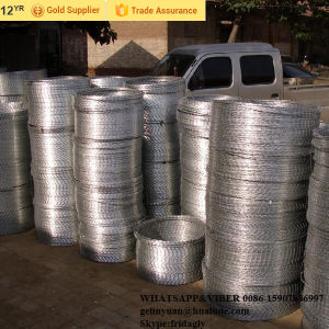 ISO 9001 Hot-Dipped Galvanized Wire / Electro Galvanized Wire pictures & photos