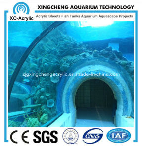 Acrylic Tunnel for Underwater Oceanarium Projects pictures & photos