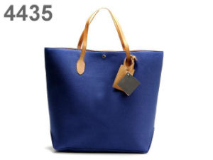Fashionable Handbags (CH20110)