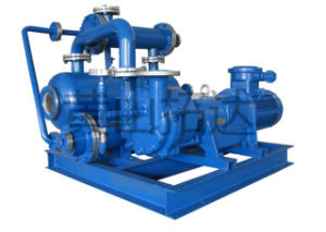 Jzj2b1200-4.1 Roots Water-Ring Vacuum Pump
