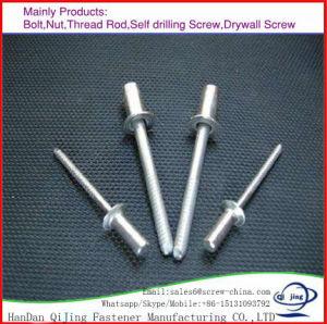 China Aluminium Blind Rivet Carbon Steel Pull Pin Blind Rivet pictures & photos
