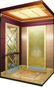 Japan FUJI Home Hotel Luxury Passenger Lift