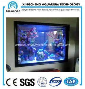 Wall-Mounted Plexiglass Indoor Aquarium pictures & photos