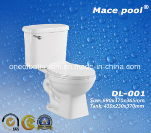 Ceramic Sanitary Ware Siphonic Two Piece Toilets Wc (DL-002) pictures & photos