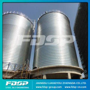 Galvanized Steel Silo with Roof Catwalk Support pictures & photos