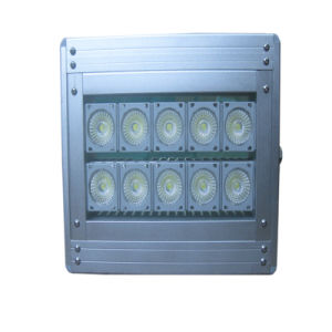 IP66 20W Outdoor LED Flood Lighting with Meanwell Driver pictures & photos