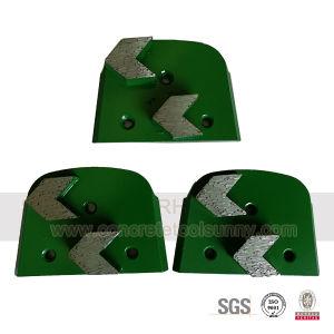 Double Segments Lavina Diamond Grinding Plate for Lavina pictures & photos