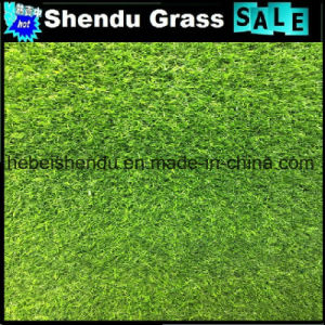 Green+Green Yran 20mm Artificial Grass for Middle East pictures & photos