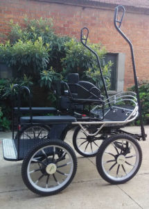 Marathon Cart Horse Vehicle with Single Horse (GW-HC037-13#) pictures & photos