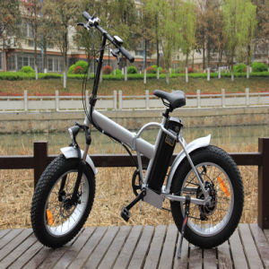 48V20ah LG Battery Electric Bike pictures & photos