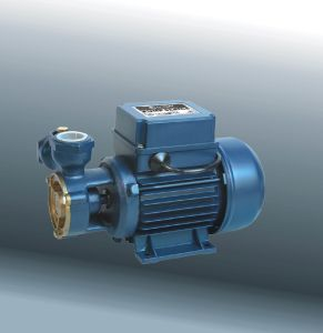 Peripheral Pump, Electric Pump with CE and UL (DKF1) pictures & photos