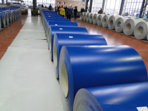 Color Coated Aluminum Coil (110H18, 110H16)