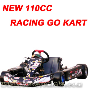 110CC 125CC Racing Go kart Buggy (MC-475) pictures & photos