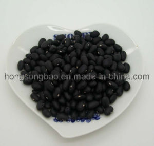 Small Black Beans (010)