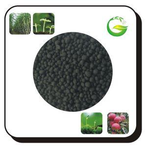 Natural Organic Fertilizer Humic Acid Granular pictures & photos