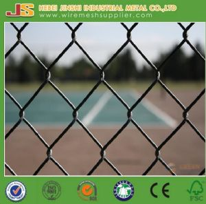 Green PVC Coated Chain Link Fence in Rolls pictures & photos