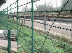 PVC Coated Security Barbed Wire