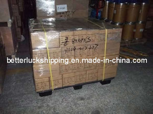 Exports Jakarta (DDP) Service From Guangzhou & Shanghai