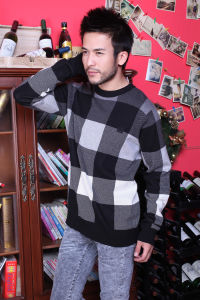 Men′s Sweaters 8 pictures & photos