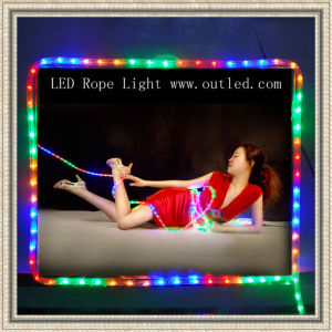 LED Rope Light (Flat Four-Wire) (SCT-R-3)