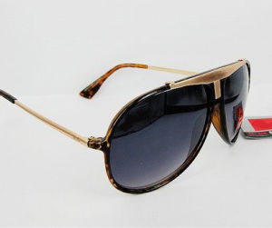 2010 Sunglasses (RBS005)