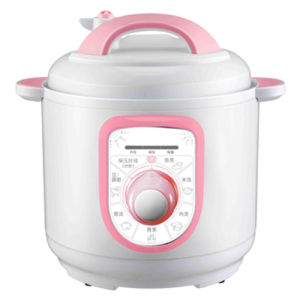 Multi-Function Electric Pressure Cooker (RP-M06S)