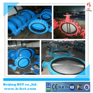 Wafer Butterfly Type Check Valve with Flanged JIS 10k or DIN Standard Bct-Wcv-01 pictures & photos