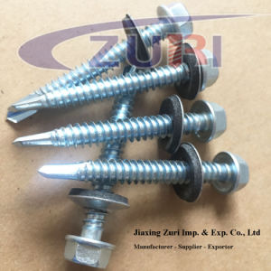 "Self Drilling Roofing Screw with EPDM Washer #12*1_3/4"" pictures & photos"