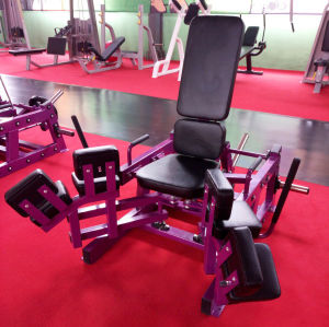 Popular Watson Fitness Equipment / Lateral Raise (SF1-3063) pictures & photos