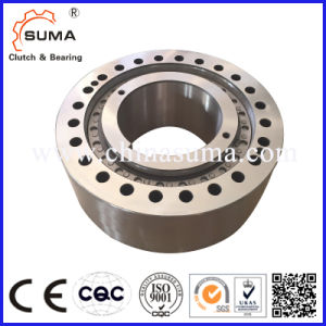 Overrunning Clutch Rsci 20-130 Series Sprag Freewheel One Direction Bearing pictures & photos