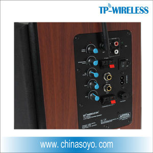 2.4GHz Digital Surround Wireless Speakers pictures & photos