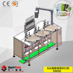 China Multi Function Filing Sealing Printing Six Head Mask Wrapping Machine pictures & photos